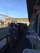 Dias 06 a 10 abril15, Cafés da manhã e almoços em Macaé, MRV (40)